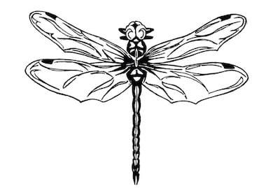 Die MOORWHISKY Geschichte - Libelle Logo